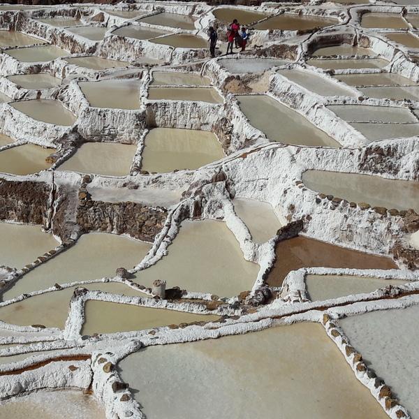 Bassins de séchage du sel en terrasse