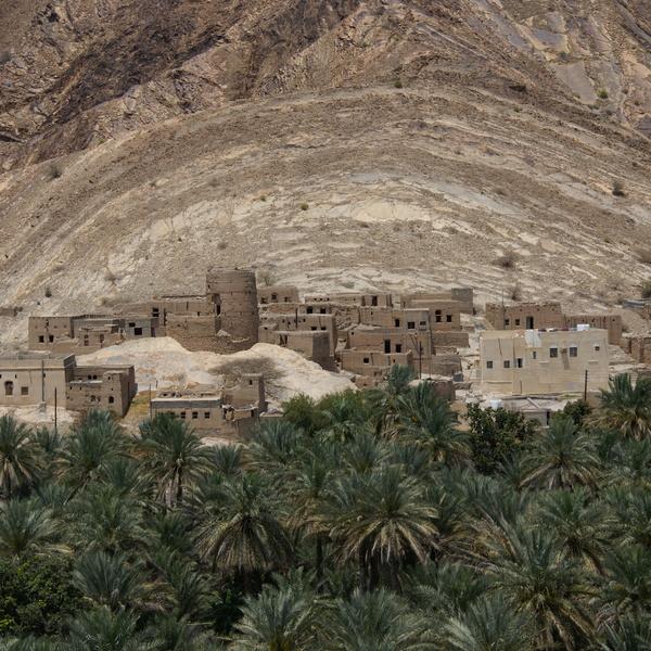 L'ancien village de Birkat al-Mawz et sa palmeraie