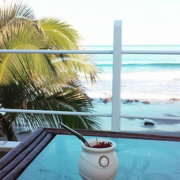 Terrasse face à la mer avec palmier