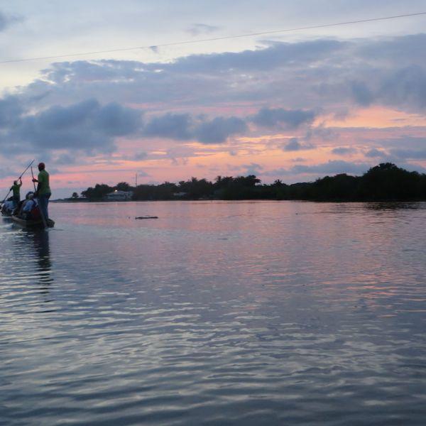 Pirogue de pêcheurs navigant sur la mer le long de la mangrove