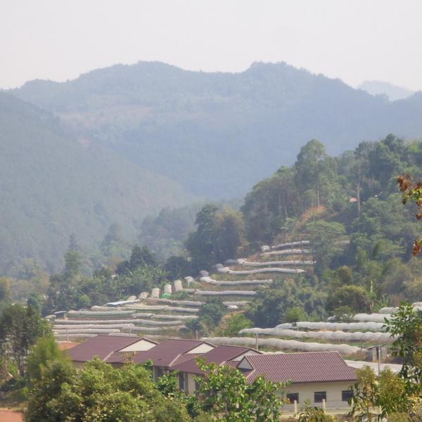 Le Doi Inthanon est le plus haut sommet de Thaïlande, situé dans la région de Chiang Maï.