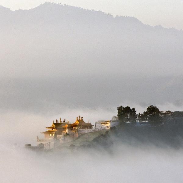 Les toits dorés du monastère de Namo Buddha émergeant de la brume