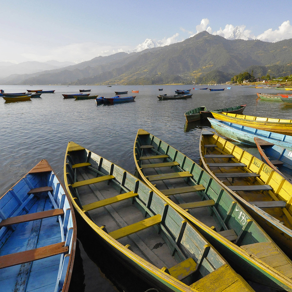 Barques colorées sur le lac de Pokhara