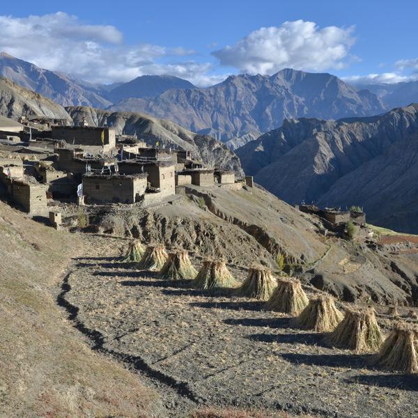 Cultures et village du Mustang