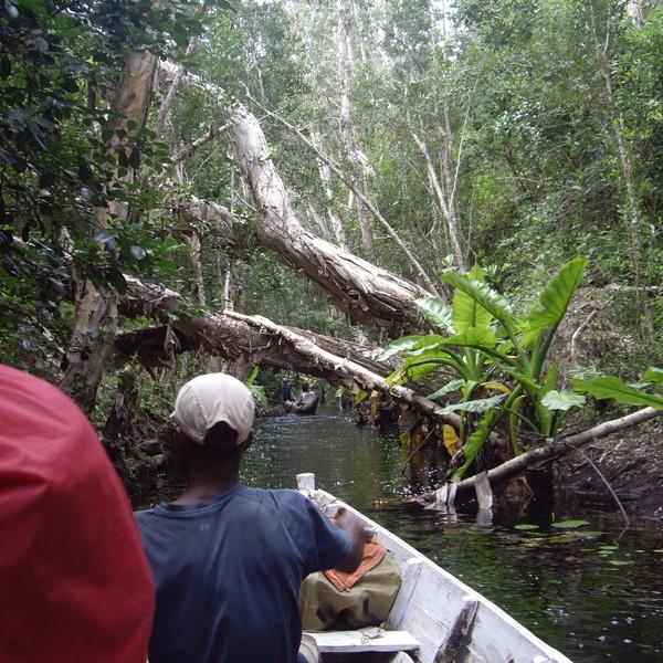 Visiteurs en pirogue traditionnelle sur le canal des Pangalanes envahi de végétation
