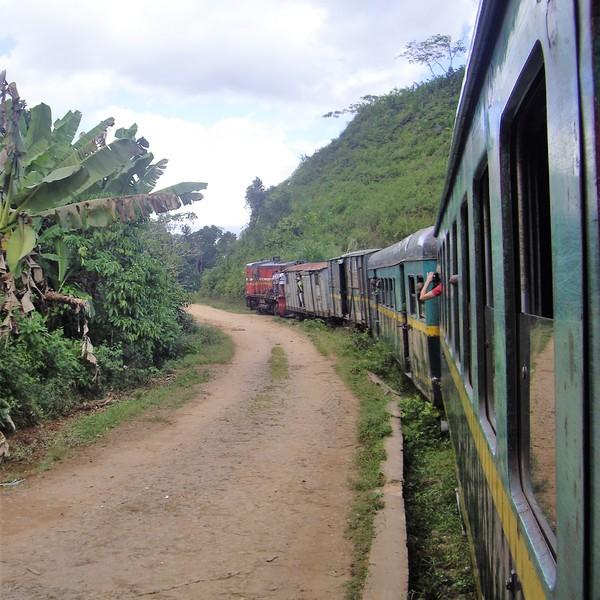 Vue subjective à bord d'un train traversant une bananeraie