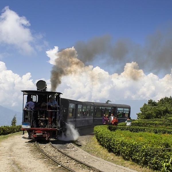 Das Bild zeigt eine Eisenbahn durch die Region Darjeeling fährt.