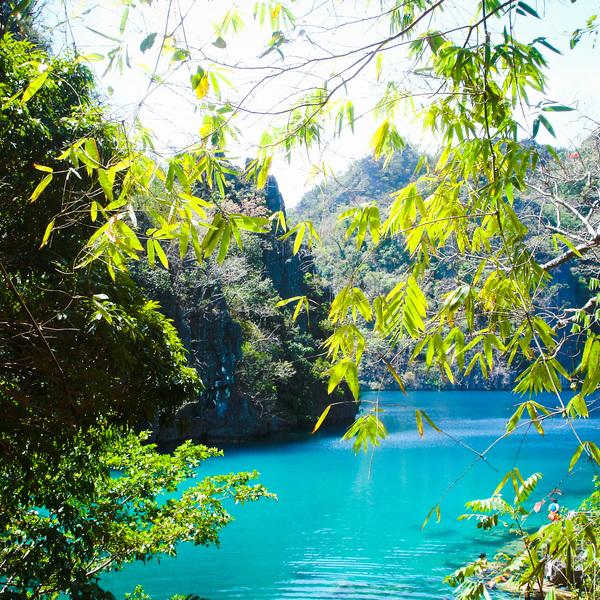 Connu pour ses lagons, les Philippines regorgent également de magnifiques lacs tropicaux!