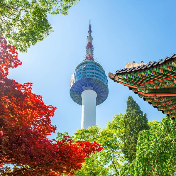 La tour de Séoul vue du parc du palais Gyeongbokgung