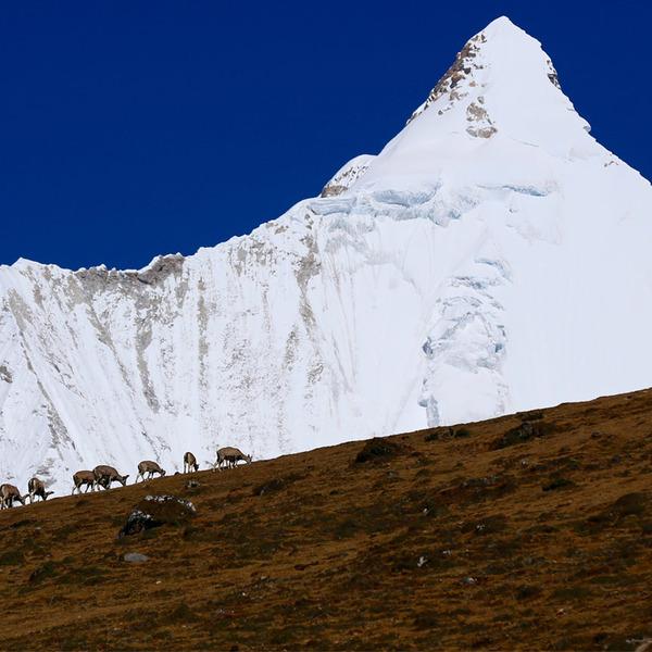 Himalayas in Bhutan