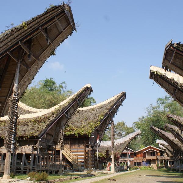 Village toraja avec ses maisons aux toits incurvés