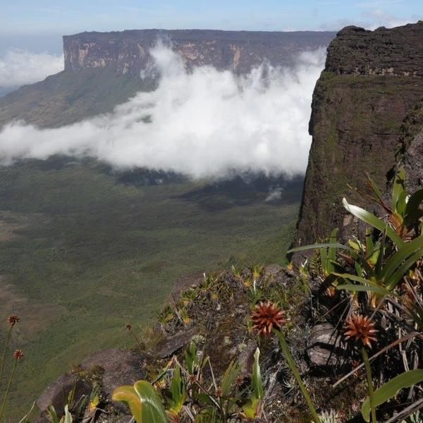 Trekking to Roraima, an unmissable natural wonder