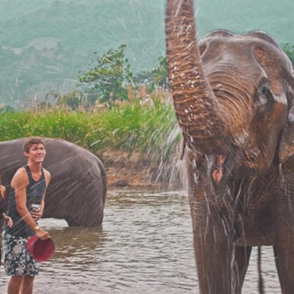 Des touristes lancent de l'eau sur un éléphant dans une rivière