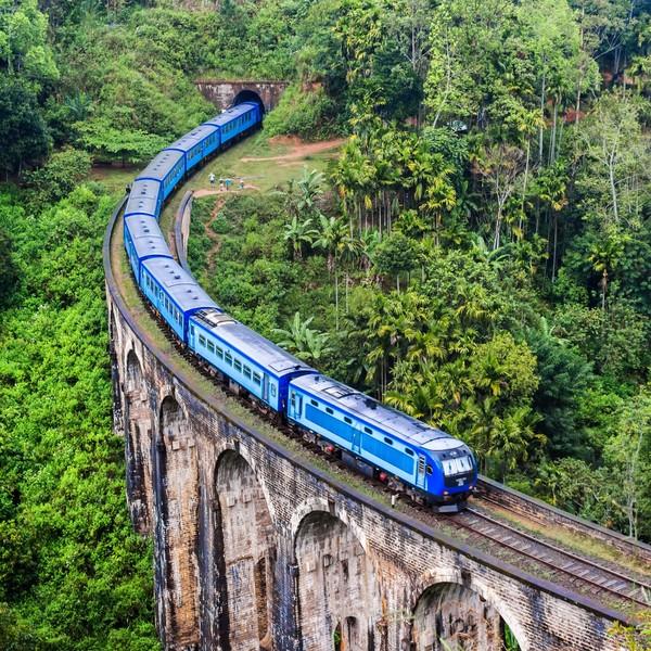 Train bleu sur un aqueduc au-dessus de la jungle