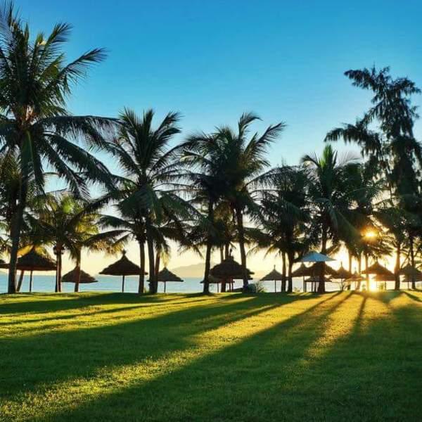 Plages paradisiaques bordées d'eaux turquoises et de cocotiers