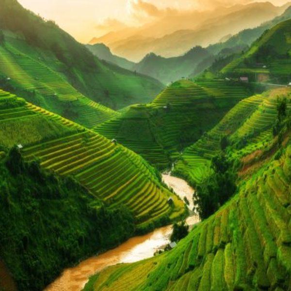 Paysage de cultures en terrasse à flanc de montagne, traversées par une rivière