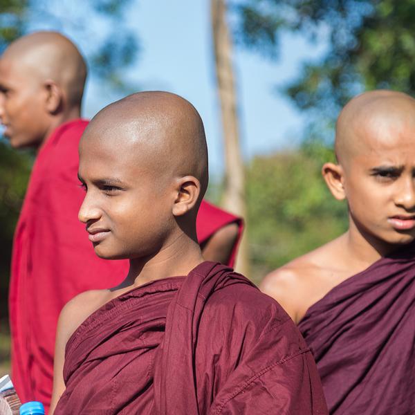 Jeunes moines boudhistes