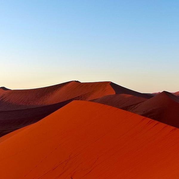 Dunes de sable rougeoyantes dans la lumière du soleil levant