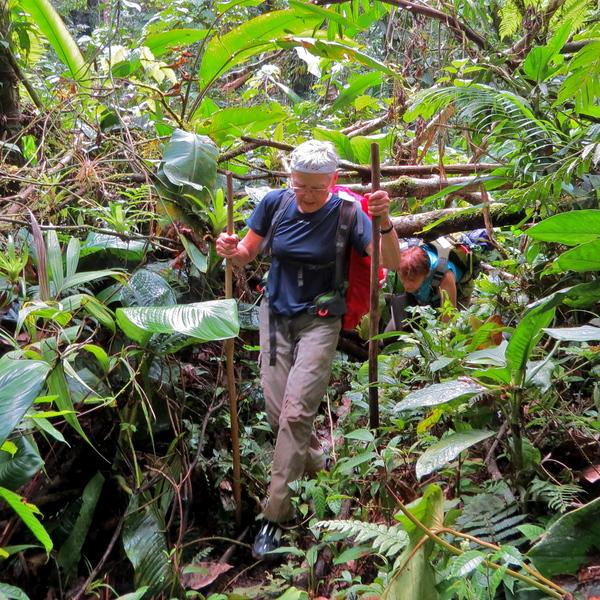 Trekking in Panama