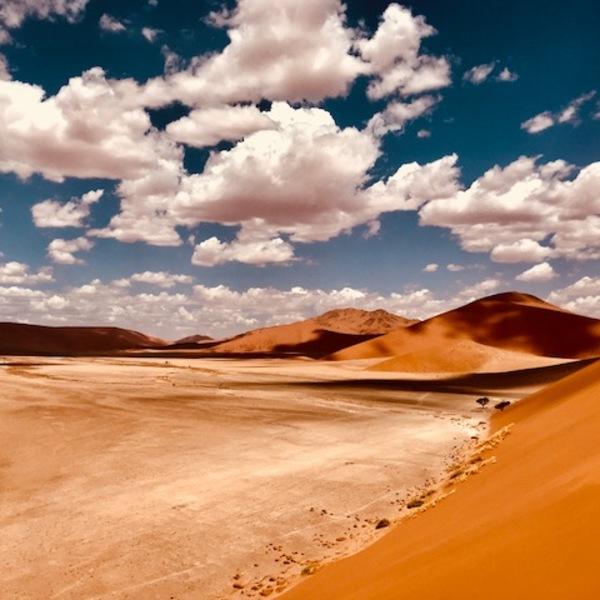 Paysage de dunes ocres sous un ciel bleu