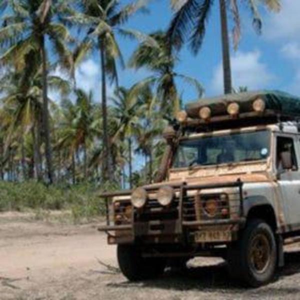 Un 4x4 en bord de piste devant une forêt de palmiers