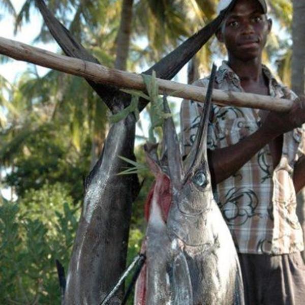 Un pêcheur et l'espadon qu'il vend sur le marché de Maputo