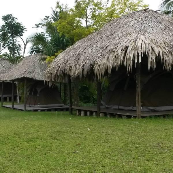 Cabanes en bois et toit en palmes