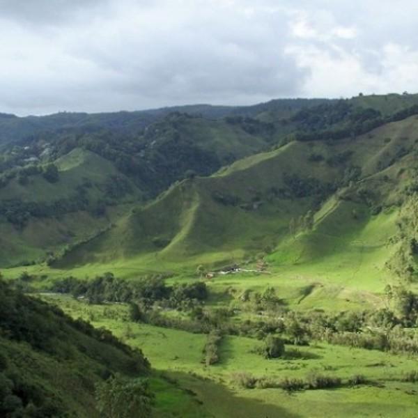 Das Bild zeigt die Kaffeeregion in Kolumbien.
