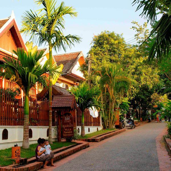 Une rue de Luang Prabang bordée de palmiers et de de maisons en bois