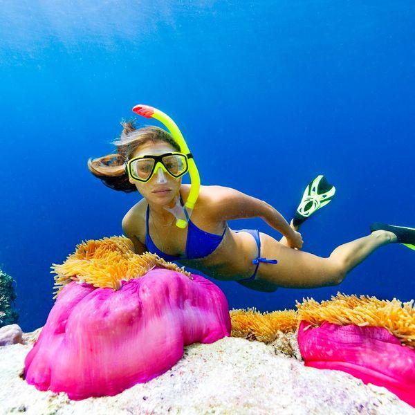 Une femme pratiquant le snorkeling à côté de grosses anémones de mer roses et oranges