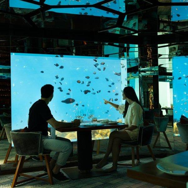 Un couple dans un restaurant sous-marin avec vue sur les poissons