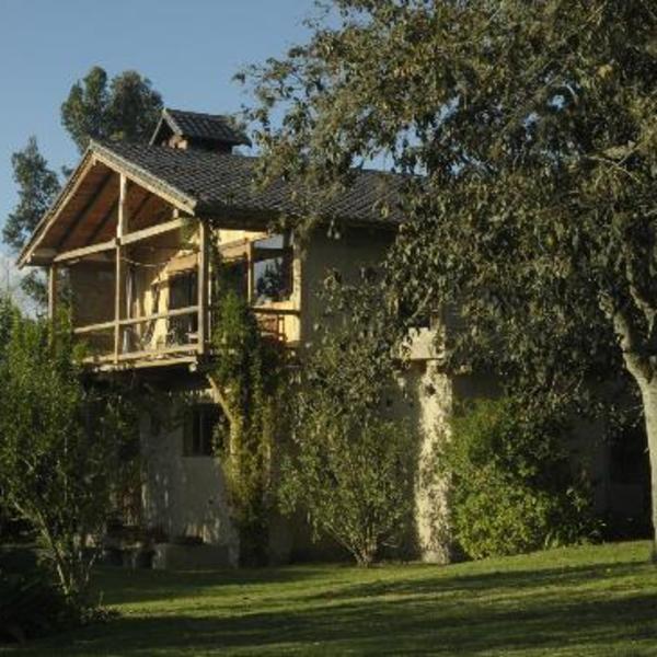 Maison en bois nichée dans au milieu des arbres
