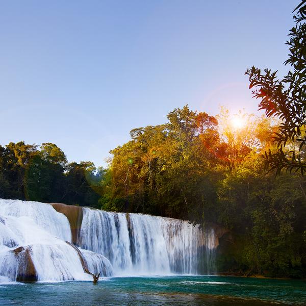 Hier sieht man den Agua Azu Wasserfall in Mexiko.