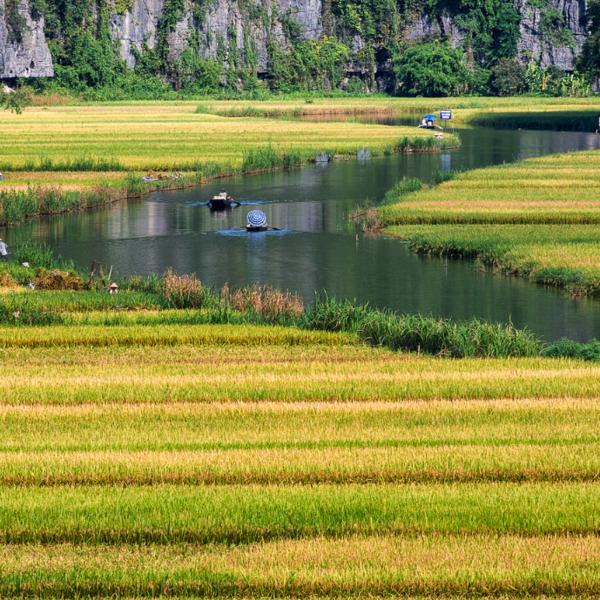 Gita in barca a Ninh Binh