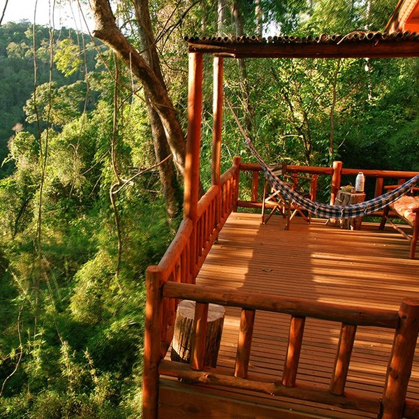 Terrasse en bois donnant sur la forêt tropicale