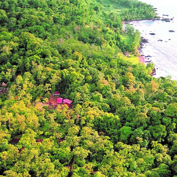 Vue aérienne sur la forêt et la côte du parc de Corcovado
