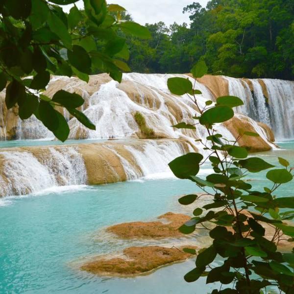 Une grande cascade d'eaux turquoises vue à travers les feuillages
