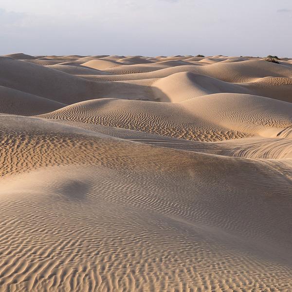 Dunes de sable à perte de vue