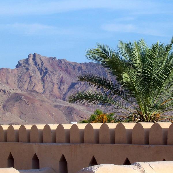 Remparts de Nizwa avec un palmier et les montagnes en arrière-plan