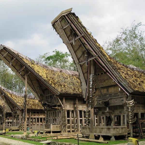 Das Bild zeigt Tana Toraja.