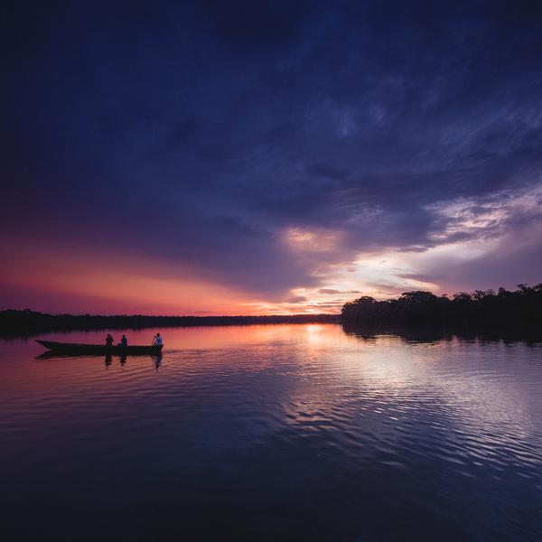 Puesta de sol en selva amazónica
