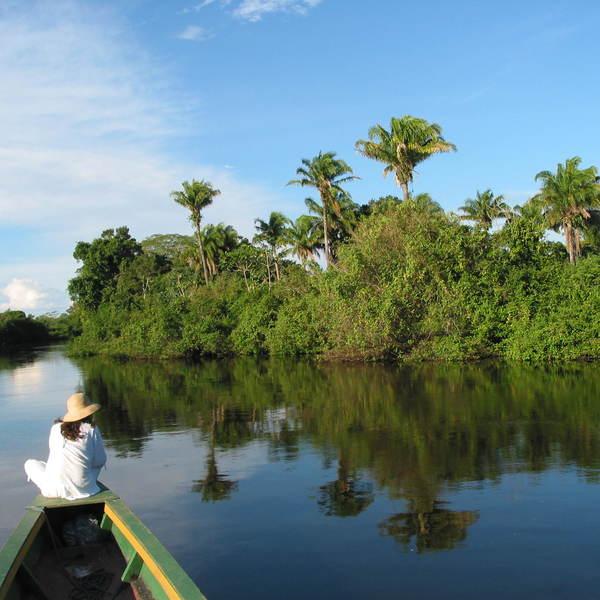 Vue subjective à bord d'une pirogue navigant sur une étendue d'eau bordée de forêt tropicale