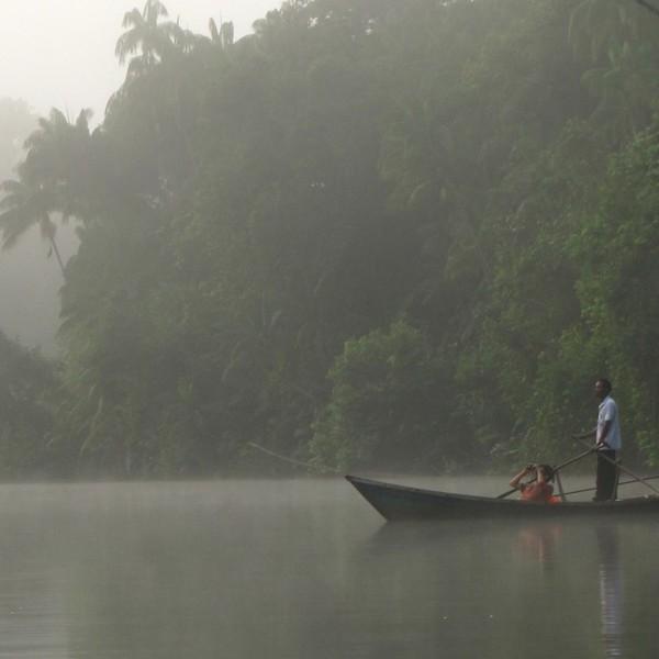 Deux personnes dans une barque dans la brume avec la forêt tropicale en silhouette