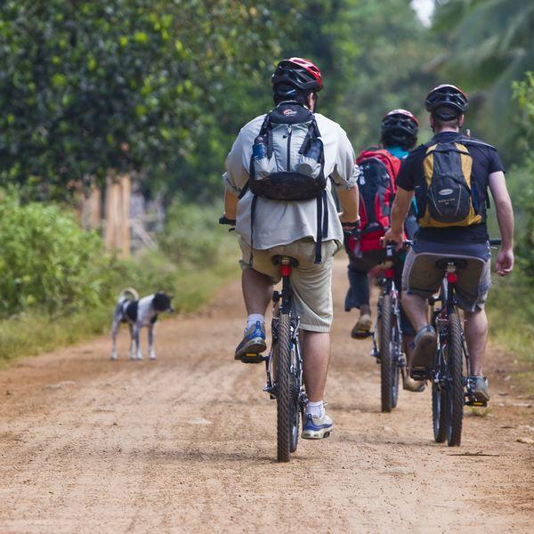 Groupe de cyclistes sur une piste de terre