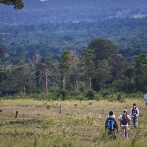 Groupe de randonneurs traversant une plaine