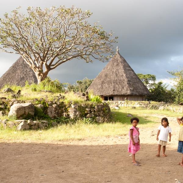 Das Bild zeigt ein Dorf in der Nähe von Flores.