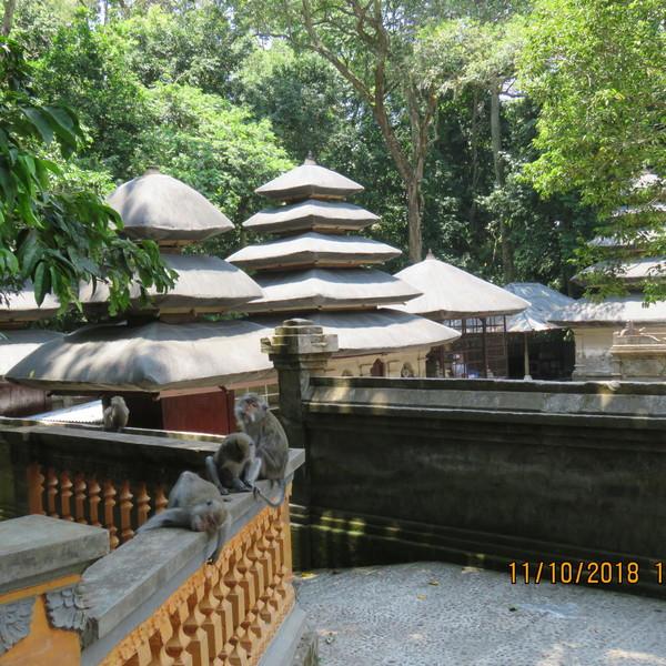 Das Bild zeigt den Alas Kedaton Tempel.