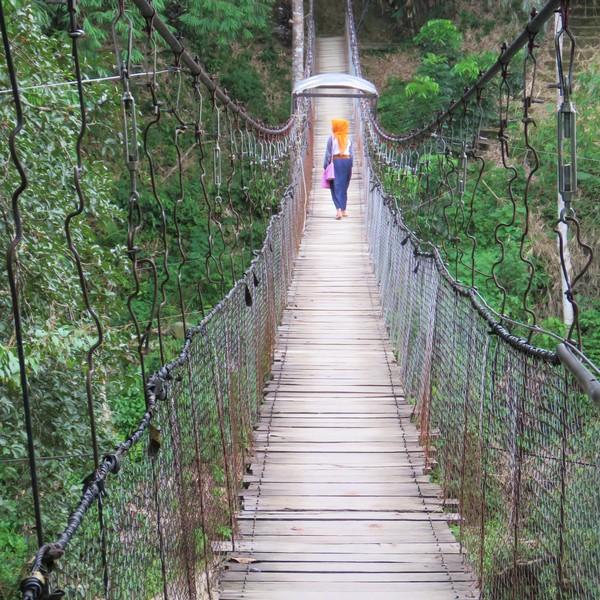 Das Bild zeigt eine Hängebrücke.