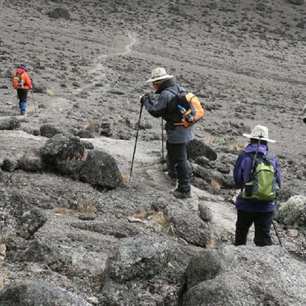 Climbing Mount Kilimanjaro is one of those things that make you feel exhilarated and gives a sense of purpose!