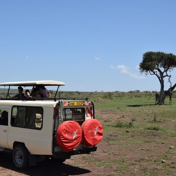 Safari in Masai Mara.
